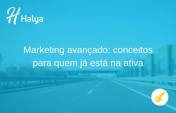 halya-marketing-digital